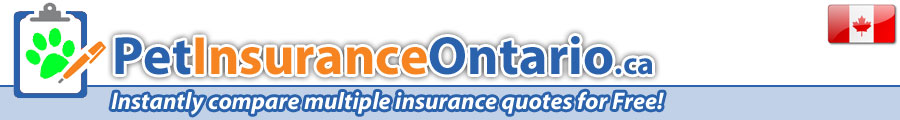 Welcome to Pet Insurance Ontario - Compate Pet Insurance in ontario